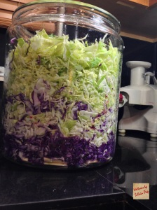 Picture of Cabbage in the jar - 2