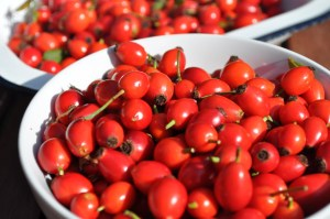 The Amazing Health Benefits of Rosehip Tea!